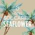Logo Hotel Sol Caribe Sea Flower